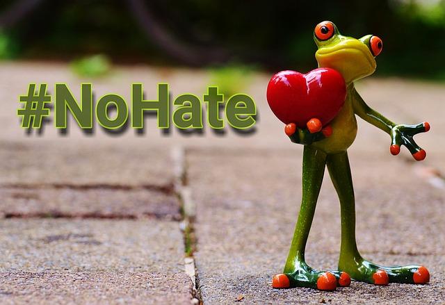 žádná nenávist